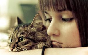 Любят ли кошки своих хозяев и других людей