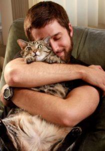 Как правильно обнимать кошек